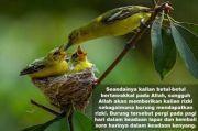 Mutiara Kisah Aa Gym: Carilah Rezeki Seperti Tawakkalnya Burung