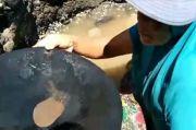 Penampakan Warga Maluku Tengah Beramai-ramai Berburu Emas di Pantai Pohon Batu