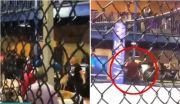 MMA Gempar! Pria Bersenjata Umbar Tembakan saat Tawuran Penonton MMA