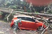 Pohon Tumbang di Puncak Timpa Mobil, Polisi: Tak Ada Korban Jiwa