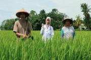Regenerasi Sektor Pertanian, Pemprov Jabar Diminta Beri Beasiswa Anak Petani