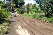 Jalan Kabupaten Penghubung 2 Kecamatan Berlubang dan Berlumpur