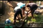 Pasuruan Gempar, Ular Sanca Kembang Sepanjang 4 Meter Gigit 2 Warga