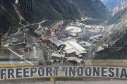 Punya Saham di Freeport, Tapi BUMD Papua Belum Juga Rampung