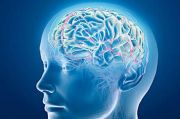 COVID Belum Usai, Muncul Kluster Penyakit Otak Misterius di Kanada