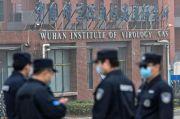 WHO Tegaskan Asal Virus Corona dari Pasar Hewan, Bukan Laboratorium