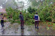 Pohon Tumbang Tutup Akses Jalan Sultan Hasanuddin Kota Malino