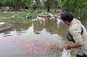 Diguyur Hujan Lebat, TPU Semper Terendam Banjir Setinggi 40 CM