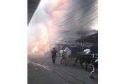 Kebakaran di Tanah Abang, Begini Detik-detik Penyelamatan Hewan Sapi dari Jilatan Api