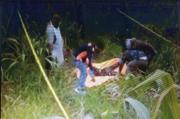 Terkait Penemuan Mayat di Kebun Jagung, Ini Penjelasan Polres Aceh Tenggara