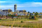 Berhak Kelola Listrik di Blok Rokan, PLN Siap Nego Wajar dengan Chevron