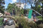 Siang Bolong, Pohon Besar Tiba-tiba Tumbang Hancurkan 5 Mobil di Bandung