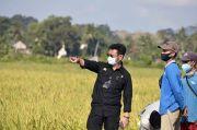 Kementan Dukung Milenial Bangun Pertanian Berkelanjutan