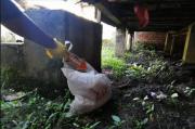 Penemuan Mayat Bayi dalam Kantong Plastik Gegerkan Warga Plaju