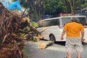 Mobil Rusak Tertimpa Pohon Besar di Kebayoran, Eros Djarot dan Keluarga Selamat