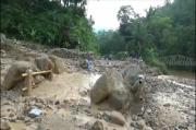 Longsor Batu dan Lumpur Tutup Jalur Antar Desa di Pacitan, Ratusan Warga Terisolir