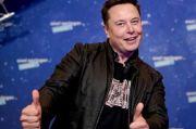 Elon Musk Pamer Monyet Main Video Game Pakai Kekuatan Pikiran, Kok Bisa?
