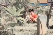Viral Anak Kecil Sendirian Ziarah Kubur, Warganet: Semoga Allah Angkat Derajatnya