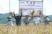 Gubernur Jakarta Anies Baswedan Panen Raya Padi di Cilacap