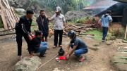 Asyik Mengadu Ayam, 3 Pelaku Judi di Toraja Utara Diciduk Polisi