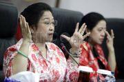 Urusan Penanganan Bencana, Hasto Sebut Megawati Lebih Heboh dari Pemilu