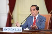 Jokowi Tegaskan Indonesia Serius dalam Pengendalian Perubahan Iklim