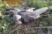 Tiga Hari Menghilang, Endi Ditemukan Tewas di Semak-semak Bersama Motornya