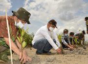 Pemulihan Ekosistem Mangrove Butuh Komitmen Semua Pihak