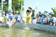 Resmikan Kegiatan PIM, Ridwan Kamil Tebar Ikan di Kolam Biofolk