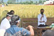 Impor Beras Batal, Jokowi: Tapi Hitung-hitungannya Harus Pasti