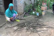 Hanya Bekerja Meraut Sapu Lidi, Nek Sri Murtini Berjuang Hidupi 8 Cucunya