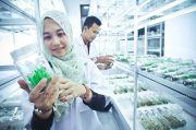UMM Peringkat Pertama PTS Penerima Pendanaan PKM se-Indonesia
