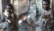 Kampung Sepi Akibat COVID-19, Katak Berukuran Bayi Manusia Berkeliaran