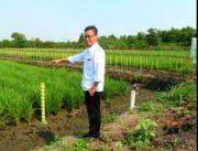 Benih Padi Kementan Dukung Produktivitas Petani Penangkar