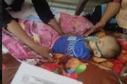 Idap Pneumonia, Bayi 11 Bulan Ini Butuh Uluran Kasih