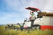 Kembangkan Pertanian di Tengah Perkotaan, Kendari Disupport Kementan
