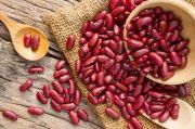 Manfaat Kacang Merah Bagi Kesehatan, Bisa Turunkan Kolesterol dan Mengontrol Gula Darah