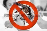 Calon Vaksin DBD Takeda Diklaim Mampu Cegah Demam Berdarah hingga 62 Persen