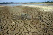BMKG: 55% Wilayah Indonesia Masuk Musim Kemarau