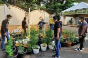 Polres Metro Jakarta Barat Gerebek Kebun Ganja Hidroponik
