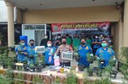 Polres Jakbar Ringkus 4 Tersangka Tanaman Ganja Rumahan di Brebes