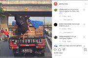Preman Disikat Polisi, Bajing Loncat Muncul Kembali di Jakarta Utara