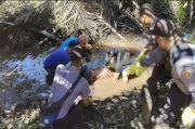 Sadis! Usai Cekcok Suami Bantai Isteri dengan 11 Tikaman, Mayatnya Dibuang di Kebun Sawit