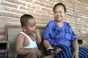 Heboh, Bayi Usia 3 Tahun di Indramayu Ini Doyan Makan Batu Bata