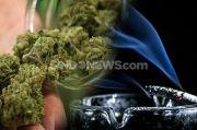 Fakta-Fakta Ganja, Jenis Narkoba yang Diduga Digunakan Anji