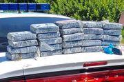 Coba Cari Sarang Penyu, Peneliti di AS Justru Temukan Puluhan Kilogram Kokain