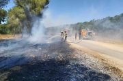 Israel Diserang Banyak Balon Pembakar setelah Membombardir Gaza