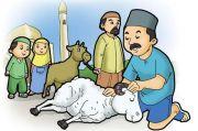 Berkurban Hukumnya Wajib Bagi yang Mampu, Benarkah Demikian?