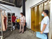 Demam Babi Afrika Jadi Momok Menakutkan Bagi Peternak di Sulut