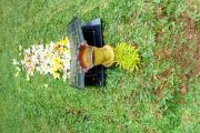 Kisah Hikmah : Pesan dari Kuburan
